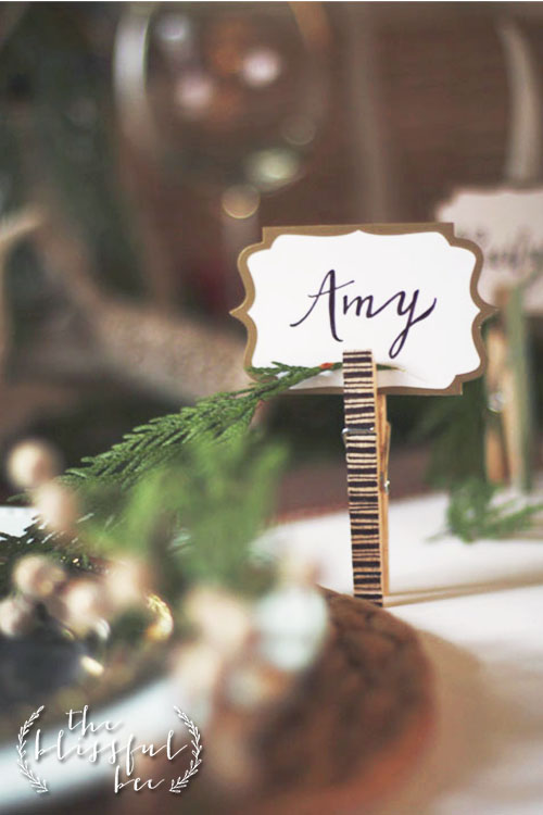 PlaceCards7