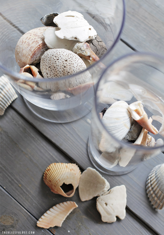 Diy Sea Shell Centerpiece The Blissful Bee
